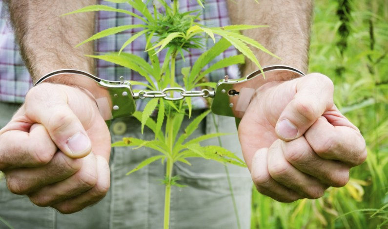 Is Marijuana Possession a Crime in Minnesota?
